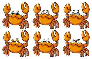 Crabes avec différentes expressions faciales