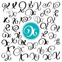 Ensemble de lettre de calligraphie de vecteur dessiné à la main X