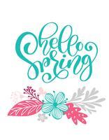 Bonjour printemps texte dessiné à la main et la conception de carte de voeux vecteur