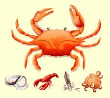 Différents types de fruits de mer vecteur