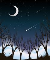 Scène de nuit ciel forestier vecteur