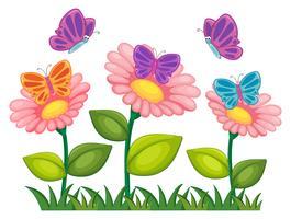 Papillons volant dans un jardin de fleurs