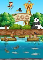 Scène au zoo avec de nombreux animaux sauvages vecteur