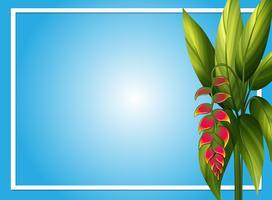 Modèle de bordure avec fleur d'oiseau de paradis vecteur