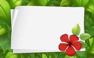 Modèle de bordure avec fleur d'hibiscus vecteur