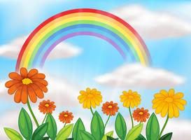 Jardin de fleurs et bel arc-en-ciel vecteur