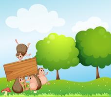 Hérissons et panneau en bois dans le champ vecteur