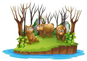 Ours sur une île isolée vecteur