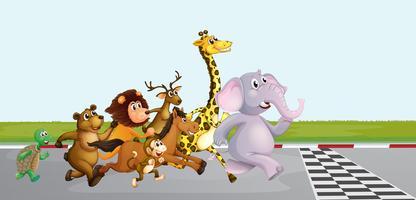 Animaux sauvages courant sur la route