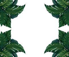 Design de fond avec des feuilles vertes