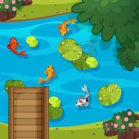 Vue de dessus de l'étang