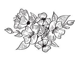 Croquis dessiné à la main de fleur de Rosa canina