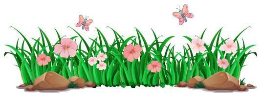 Fleur et herbe pour la décoration