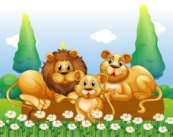 Famille de lion se reposant dans le jardin