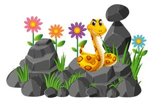 Serpent sauvage sur les rochers