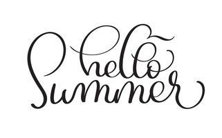 Bonjour l'été fabriqué à la main de texte vintage vectoriel sur fond blanc. Illustration de lettrage de calligraphie EPS10