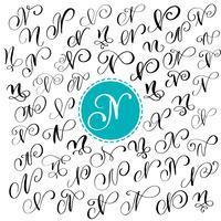 Ensemble de lettre de calligraphie de vecteur dessiné à la main N. Police de script. Lettres isolées écrites à l'encre. Style de pinceau manuscrit. Lettrage à la main pour une affiche de conception d'emballages de logos