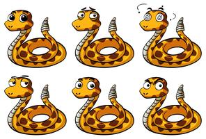 Hochet serpent avec différentes expressions faciales