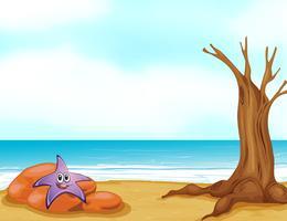 Une étoile de mer dans une pierre vecteur