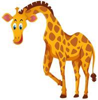 Girafe au visage heureux vecteur