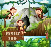 Famille de singes dans la nature zoo vecteur