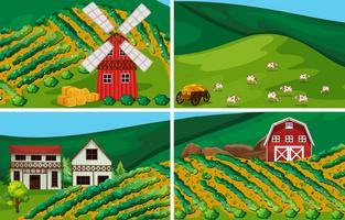 Les terres agricoles vecteur