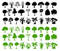 Variété d'arbres vecteur