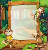 Bordure design avec trois singes dans la jungle