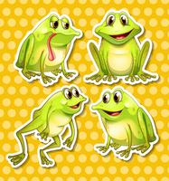 La grenouille vecteur