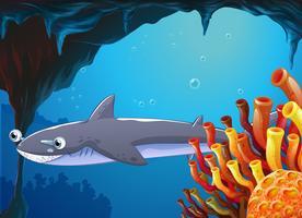 Un gros poisson près des récifs coralliens vecteur