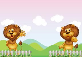 Deux lions vecteur