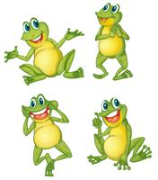 Série grenouille