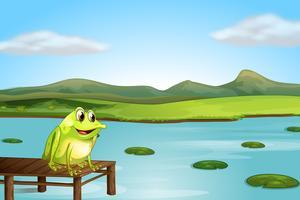 Une grenouille au-dessus du pont de bois