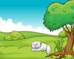 Un chat qui dort vecteur