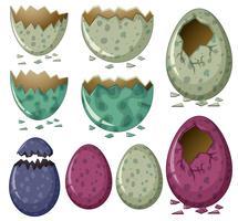 Différents modèles d'oeufs de dinosaures