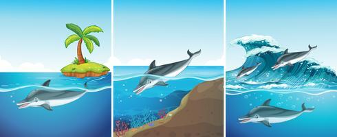 Scène de l'océan avec les dauphins nageant vecteur