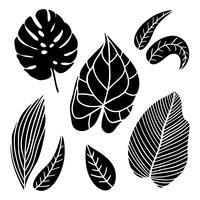 Ensemble de feuilles de style vintage. vecteur