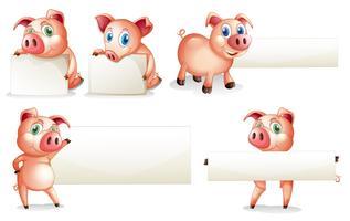 Modèle de papier avec cochon vecteur