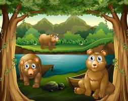 Trois ours vivant au bord de la rivière vecteur
