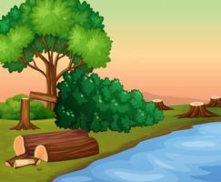 Scène avec des bois coupés au bord de la rivière