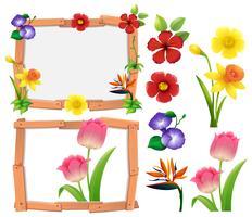 Modèle de cadre avec différents types de fleurs vecteur