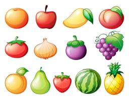 Différentes sortes de fruits
