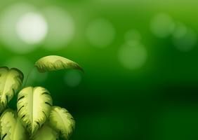 Papeterie de couleur verte avec des feuilles