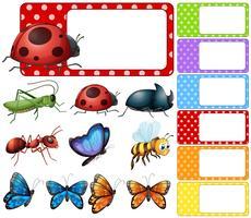 Modèle d'étiquette avec différents types d'insectes vecteur