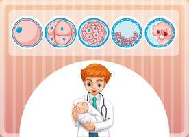 Docteur tenant petit bébé