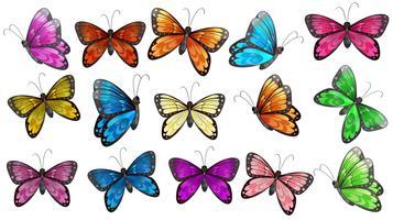 Papillons colorés vecteur