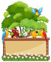 Modèle de bordure avec des perroquets sauvages vecteur
