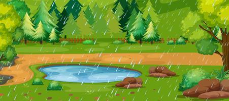 Scène de jour de pluie avec étang dans le parc