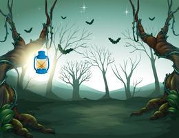 Lampe lumière dans la sombre forêt