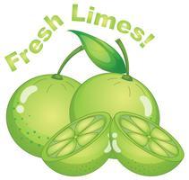 Limes fraîches sur fond blanc
